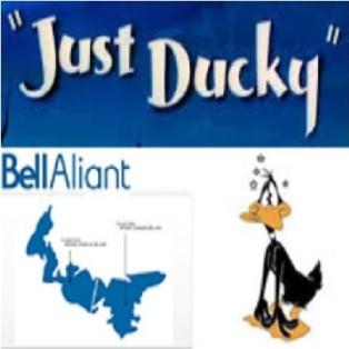 best-duck-403